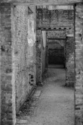 Witley Court (5)