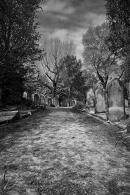 Warstone Lane Cemetery 05
